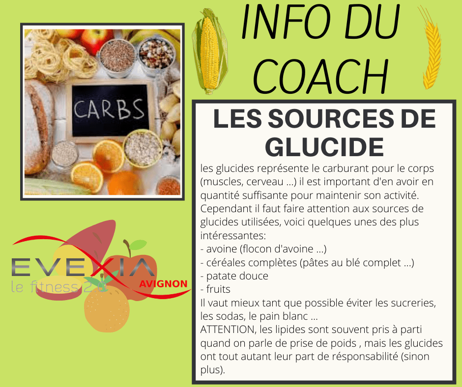 INFO DU COACH Les glucides